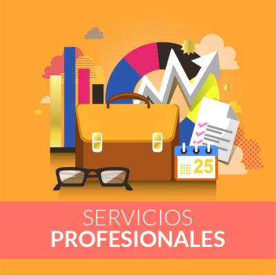Servicios-profesionales_ok